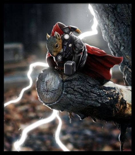 ecureuils super heros thor   Des écureuils super héros   yoda super héro spiderman photoshop photo Loki Iron Man image hulk ecureuil Batman ...