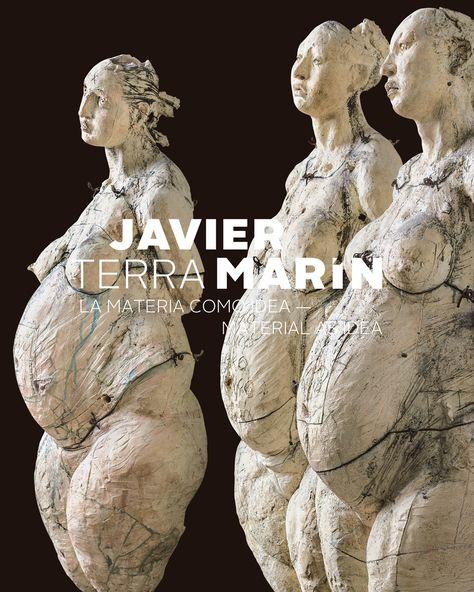 Fomento Cultural Banamex   Javier Marín. Terra
