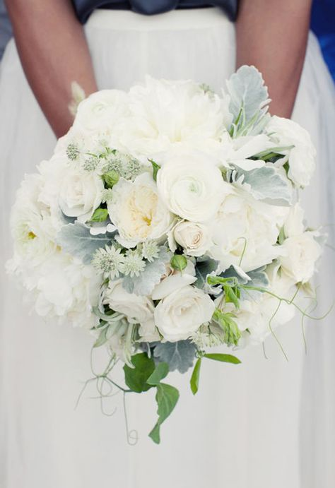 The bridal bouquet will be ivory garden roses, ivory garden spray roses, white lisianthus, and small accents of gray dusty miller and olive leaves wrapped in ivory ribbon with the stems showing.