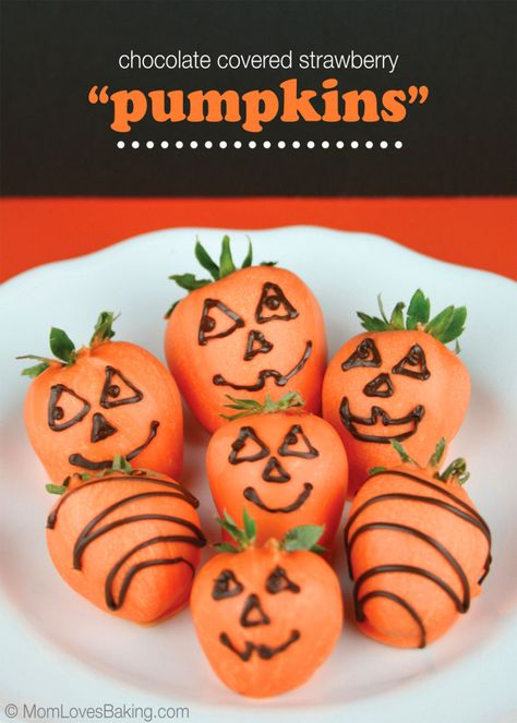 Chocolate Covered Strawberry Pumpkins, super fun and easy Halloween treat! #halloween