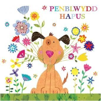 Happy Birthday Welsh Dog Birthday Greeting Cards Birthday Cards Birthday Wishes