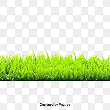 Grass Png Images Vector And Psd Files Free Download On Pngtree In 2021 Green Grass Background Grass Flower Watercolor Flower Background