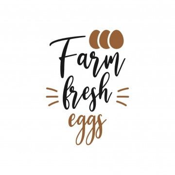 Kitchen Quote Lettering Typography Farm Fresh Eggs Quote Icons Farm Icons Kitchen Icons Png And Vector With Transparent Background For Free Download Quotes Icons Lettering Vector Quotes