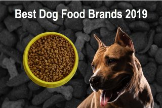 The 10 Best Dry Dog Food Brands 2019 Page 10 Of 10 Dog Food