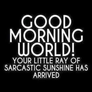 Pinterest Pins Week 1 Suusjesworld Morning Quotes Funny Work Quotes Funny Funny Good Morning Memes