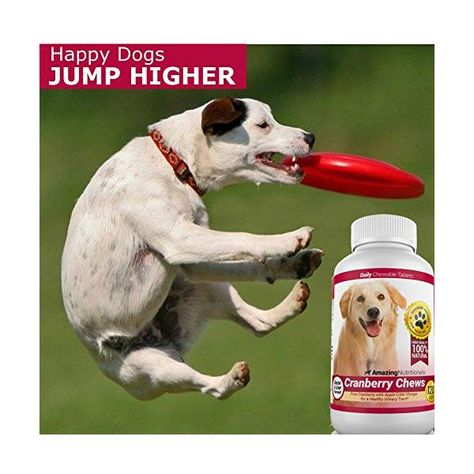 Amazing Cranberry For Dogs Pet Antioxidant Urinary Tract Support Prevents And Eliminates Uti In Dogs 120 Chews With Images Dog Uti Prevention Pets