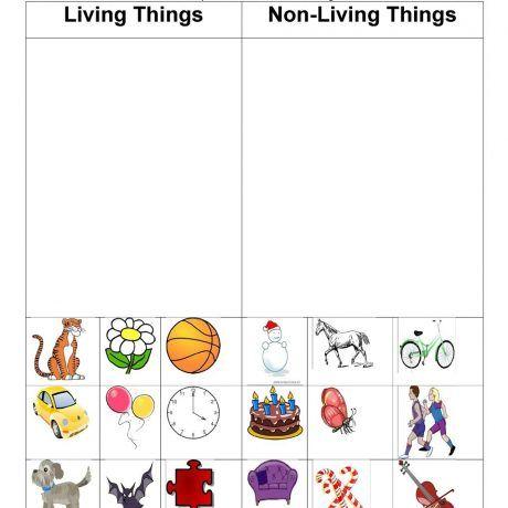 Unusual Print Living Amp Nonliving Things Worksheet Free Esl And For Kindergarten Eworksheet Print Printable Math Worksheets Math Worksheets Science Worksheets