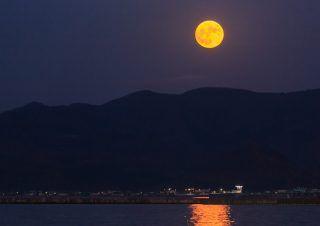 星ひとみ 下弦の月タイプ