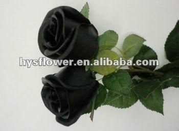 26 Gambar Bunga Mawar Kuncup Bunga Hitam Hitam Bunga Mawar Kualitas Tinggi Lembut Sentuhan Mawar Kuncup Buy Hitam Bunga Dekorasi Perni Di 2020 Bunga Gambar Pengantin