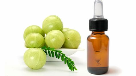 Amla: Miracle Oil or Too Good to Be True?! | Curly Nikki | Natural Hair Care