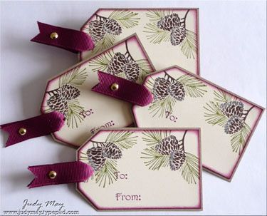 Stamps: Autumn Days, Occasional Greetings, Winter Post; Ink: Rich Razzleberry, Versamark; Accessories: Soft Suede grosgrain ribbon, Rich Razzleberry grosgrain ribbon, Gold brads, Dazzling Diamonds glitter; Tools: Stampin' Write markers (Old Olive & Chocolate Chip), Gold embossing powder, Heat gun, Glue Pen, Sponge daubers, Corner Rounder punch, Dimensionals, Top Note Die, Lots of Tags Die, Big Shot, Wide Oval Punch