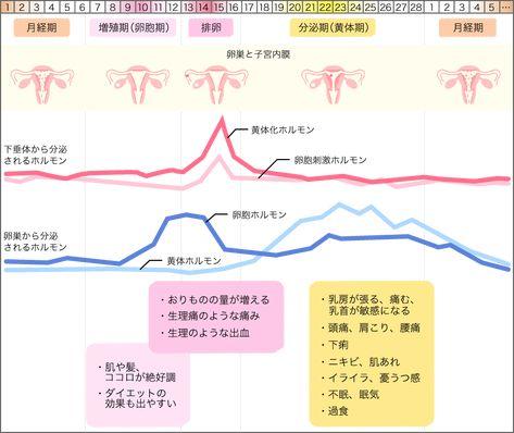 排卵期 乳首痛