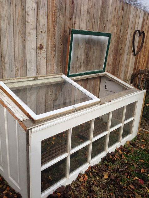 Upcycled Greenhouse From Old Windows and Doors. Old Window Greenhouse, Simple Greenhouse, Backyard Greenhouse, Greenhouse Plans, Greenhouse Wedding, Recycled Door, Recycled Windows, Old Windows, Antique Windows