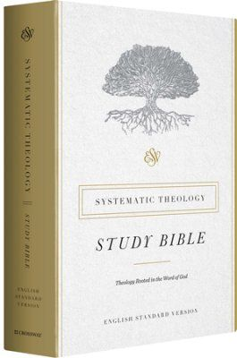 Esv Systematic Theology Study Bible Hardcover Bible Doctrine