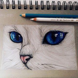 Pin Von Disnerd Auf Schone Kunste Mit Bildern Katze Zeichnen