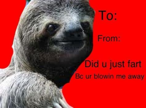 (funny,sloth,great) | Valentineu0027s Day | Pinterest | Funny Sloth, Sloth And  Funny Things
