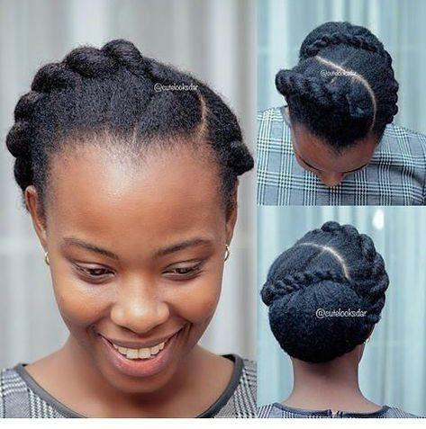 Easy Protective Styles Natural Hair Styles Natural Hair Updo