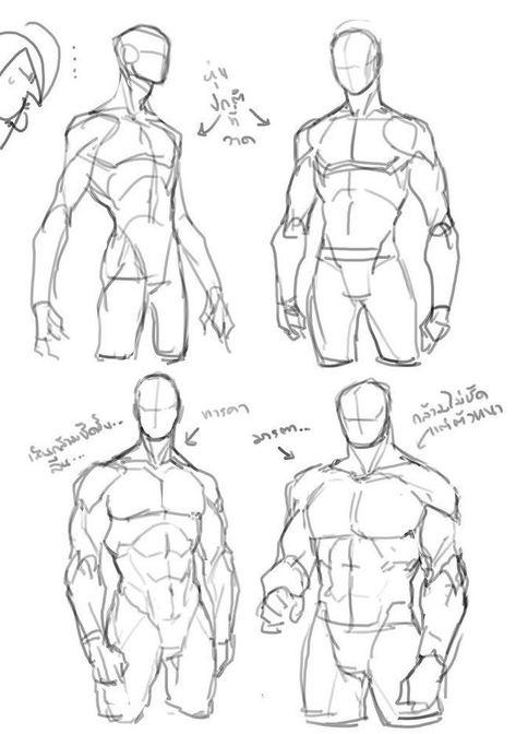 Human Anatomy Drawing, Drawing Body Poses, Body Reference Drawing, Drawing Reference Poses, How To Draw Anatomy, Anatomy Reference, Body Base Drawing, Drawing Body Proportions, Human Body Drawing