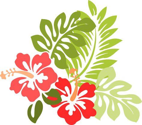 Hibiscus, Fleur, Feuilles, Feuillage