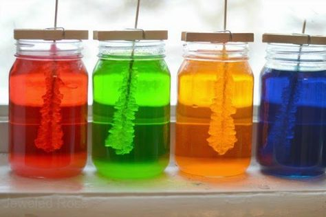 Hang een saté prikker in een potje met (gekleurd) suiker water. Wat er na een week gebeurd is echt wonderbaarlijk!