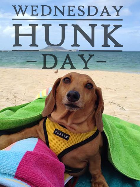Today's Wednesday Hunk is Redondo from Kailua, Hawaii.
