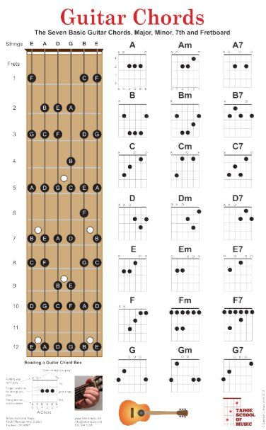 Shop Guitar Chords and Fretboard with Major Notes Poste Poster created by bjdesign. Guitar Chords And Lyrics, Music Theory Guitar, Easy Guitar Songs, Guitar Chords For Songs, Guitar Sheet Music, Beginner Guitar Chords, Guitar Books, Guitar Solo, Piano Sheet