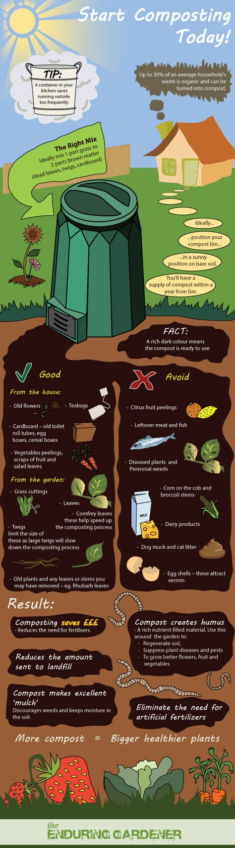 """Great infographic on how to make compost. I did not know that comfrey leaves speed up process.  Now I know where to put this impossible- to- kill and """" bully"""" herb...in my composter."""