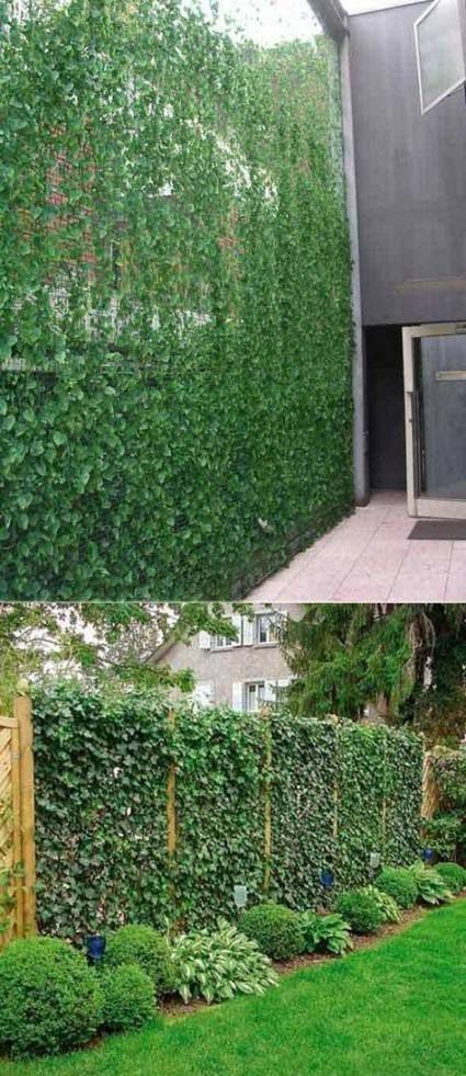 Garden Fence Ideas Natural 44 Ideas Garden Privacy Landscaping