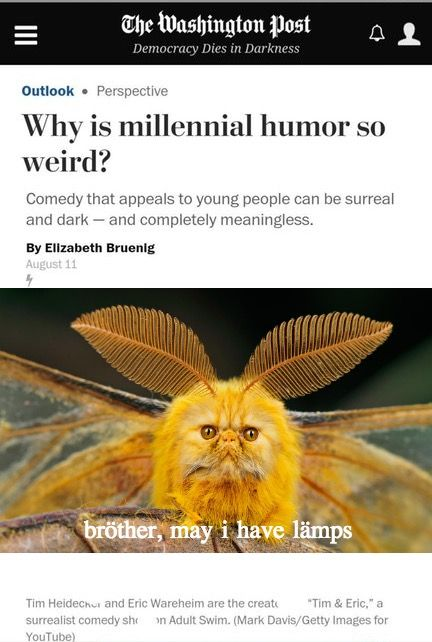 Pin By Alex G On Muses But Silly Millennials Funny Make Em Laugh Funny Pictures