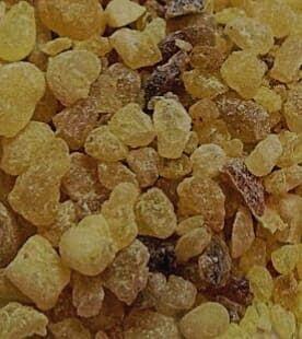 موقع هل تعلم فوائد المر الحجازي العلاجية Food Animals Dog Food Recipes Herbs