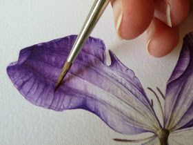 Purple Leads The Way Flower Drawing Flower Art Botanical