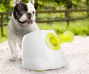 Automatic Ball Launcher Dog Toys Dog Ball Pets