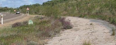 Las carreteras de Extremadura: Presentación del blog