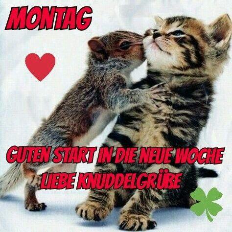 Have A Nice Start Mu Guten Morgen Lustig