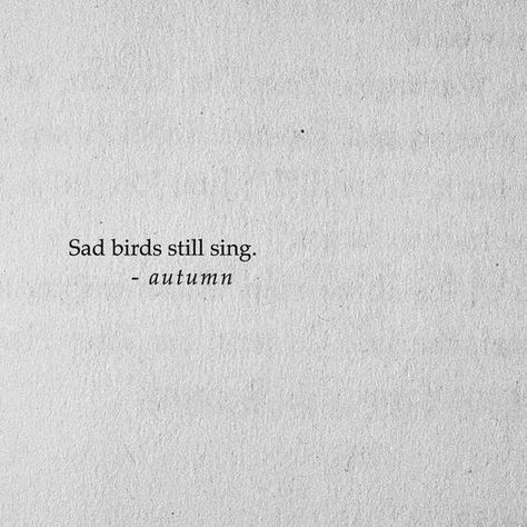 sad birds still sing #quotesdeep - #Birds #quotesdeep #Sad #scars #sing - #mequotes