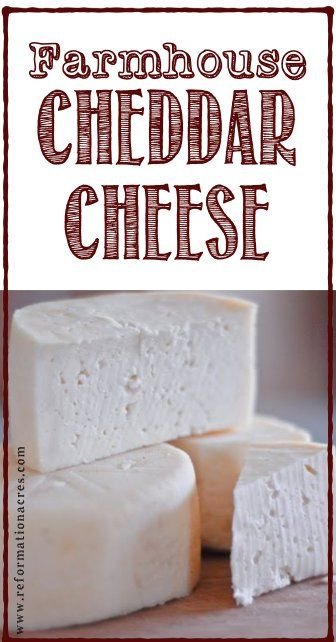 Farmhouse Cheddar Cheese ages in a fraction of the time of other recipes which means you'll be making grilled cheese sandwiches with your own homemade cheese in days! Goat Milk Recipes, No Dairy Recipes, Real Food Recipes, Cooking Recipes, Yummy Food, Making Grilled Cheese, Making Cheese, Cheddar Cheese Recipes, Healthy Recipes