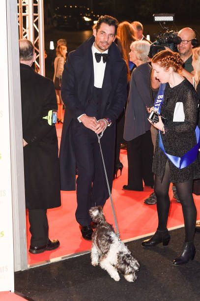 David Gandy Arrives At The Battersea Dogs Cats Home Collars Coats David Gandy Battersea Dogs David