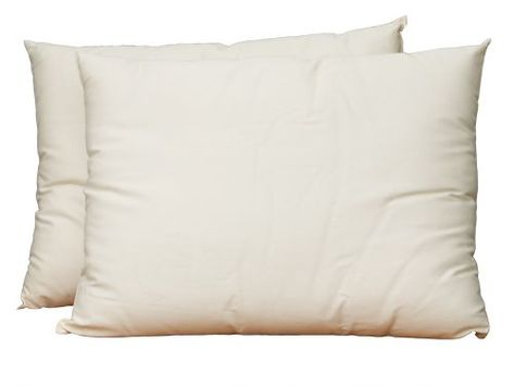 Lifekind certified organic wool pillows