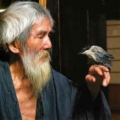熊谷守一とオナガの雛