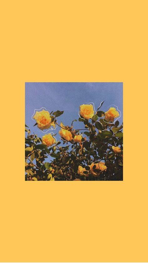 Yellow Flowers Phone Wallpaper