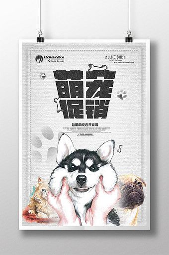 Creative Hand Painted Pet Shop Poster Design Pikbest Cat Pikbest Poster Cat Dog Print Advertisements Ideas Hand Painted Pet Poster Design Hospital Logo