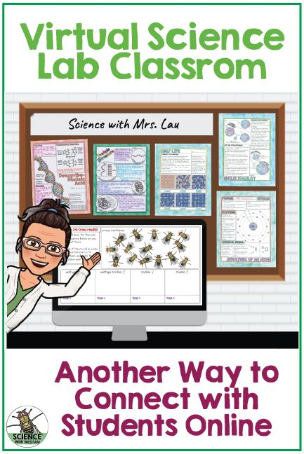 How to Create Your Own Virtual Science Lab Classroom - Science and Math with Mrs. 4th Grade Science, Science Student, Middle School Science, Science Education, Science Online, Science Vocabulary, Elementary Science Classroom, Flipped Classroom, Kindergarten Science
