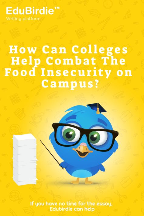 How Can Colleges Help Combat The Food Insecurity on Campus?
