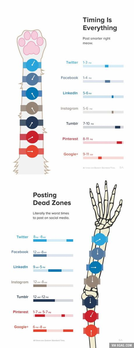 The best time to post on social media, and the worst.