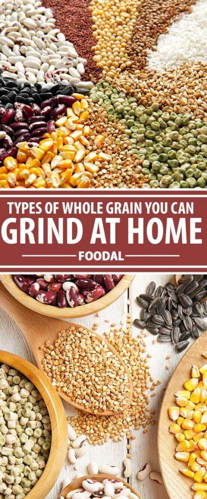 Freshly milled flour has a lively taste and superior nutrition compared to re. How To Make Flour, How To Make Bread, Healthy Grains, Healthy Eating, Growing Wheat, Types Of Cereal, Whole Grain Flour, Types Of Flour, Grain Foods