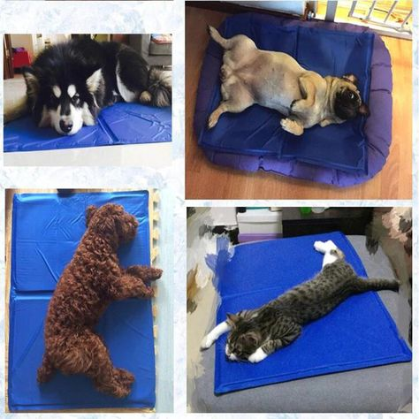 Pet Dog Cooling Mat Pets Cool Bed Chilly Ice Cooler Bed For Dogs Pets Puppy Washable Dog Mattress Cold Pillow Beds C Dog Mattresses Dog Cooling Mat Dog Bed