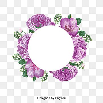 Elemento Decorativo De Flores Cartamo Guirnalda Hembra Png Y Psd Para Descargar Gratis Pngtree Vector Flowers Watercolor Flower Wreath Pink Flowers Background