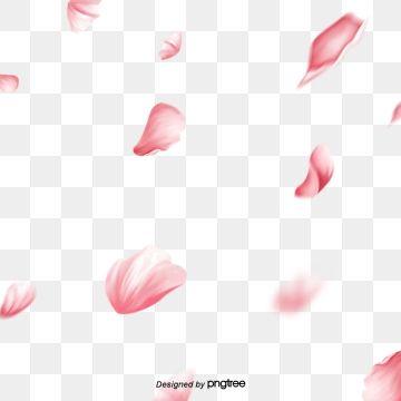 Cherry Blossom Cherry Tree Cherry Blossom Petal Pink Cherry Blossom Pink Petal Pink Flower Petal Flower Cherry Blossom Petals Painted Floral Wreath Pink Petals