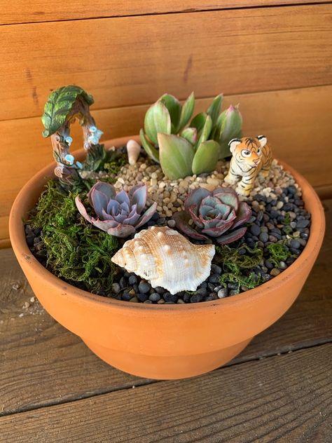 DIY Fairy & Gnome Succulent Garden