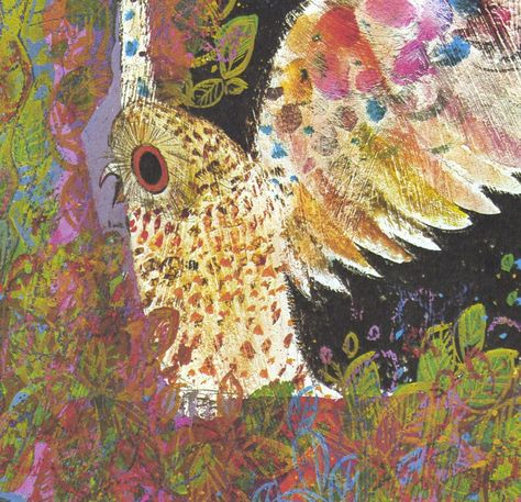 Brian Wildsmith's OWL -  1970s vintage illustration